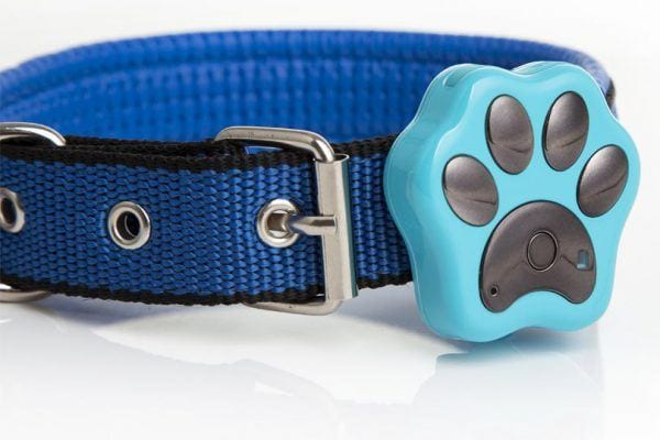 pet tracking devices for dogs
