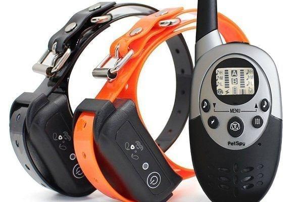PetSpy 1100 Premium Training Dog Collar Review