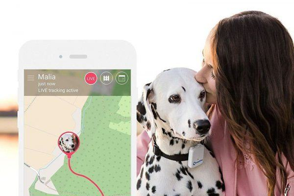Tractive 3G GPS Pet Tracker US Edition review