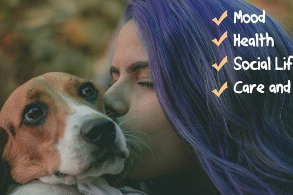 how dogs improve our life