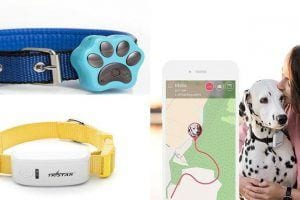 Dog GPS Tracking Devices