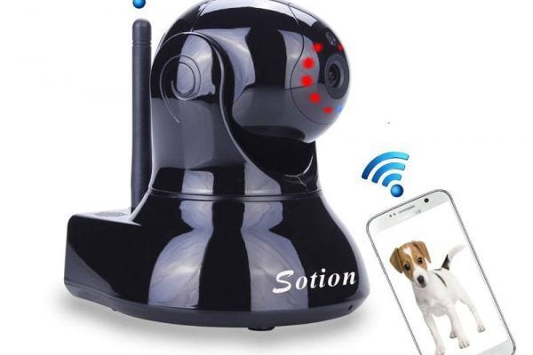 wifi dog camera
