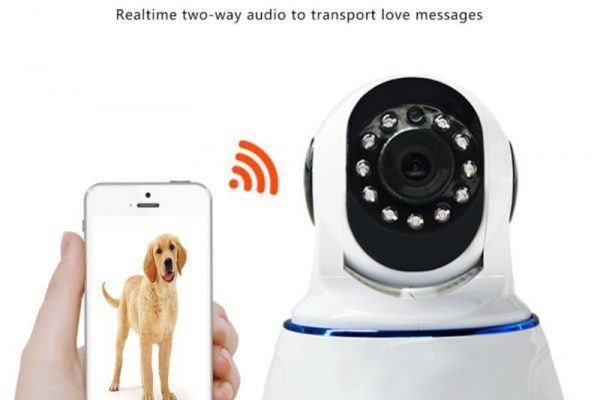 xm dog camera
