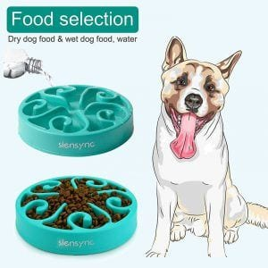 Slow Feeder Interactive Dog Bowl