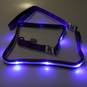 Blazin' LED Dog Leash