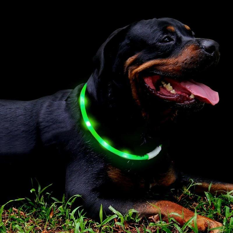 Fashion & Cool Glowing LED Dog Collar