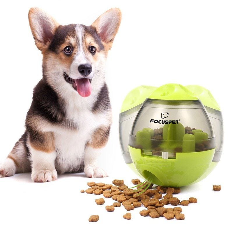 focuspet iq treatball