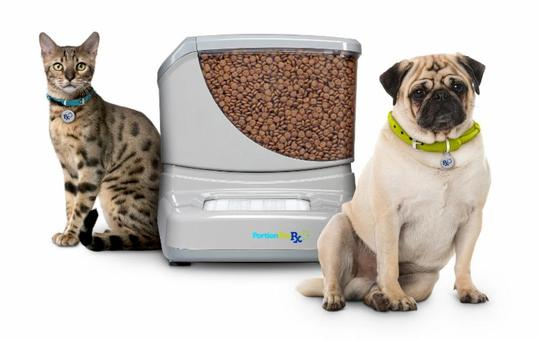 PortionPro Rx Pet Feeder Review