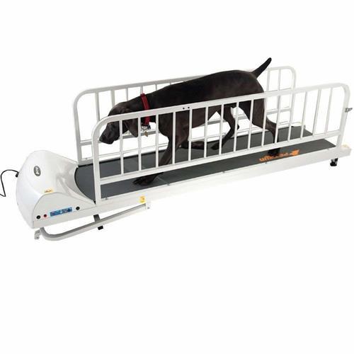 GoPet PR725 - Large Dog Breed Treadmill