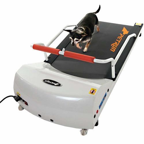 GoPet Petrun PR700 Dog Treadmill Indoor Exercise