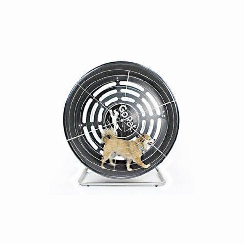 GoPet TreadWheel Dog Treadmill for Small Breeds