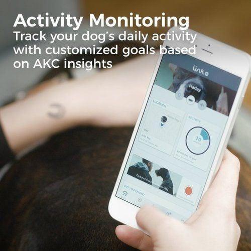 Link AKC dog tracker activity
