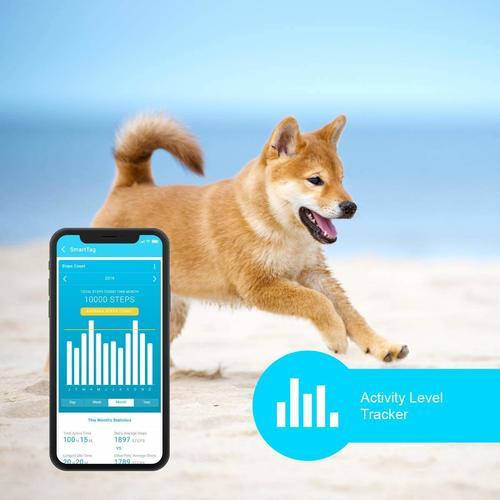 PETBLE Dog Fitness Activity Tracker