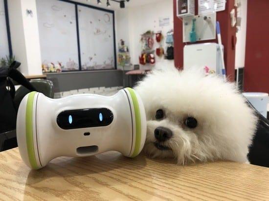 varram inteligance robot
