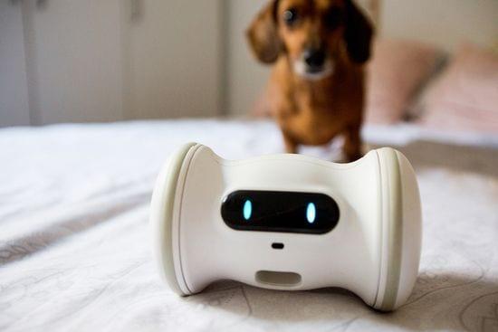varram-smart robot